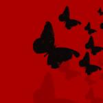 バタフライエフェクトとスピリチュアル…因果と影響と人生の変化とは?