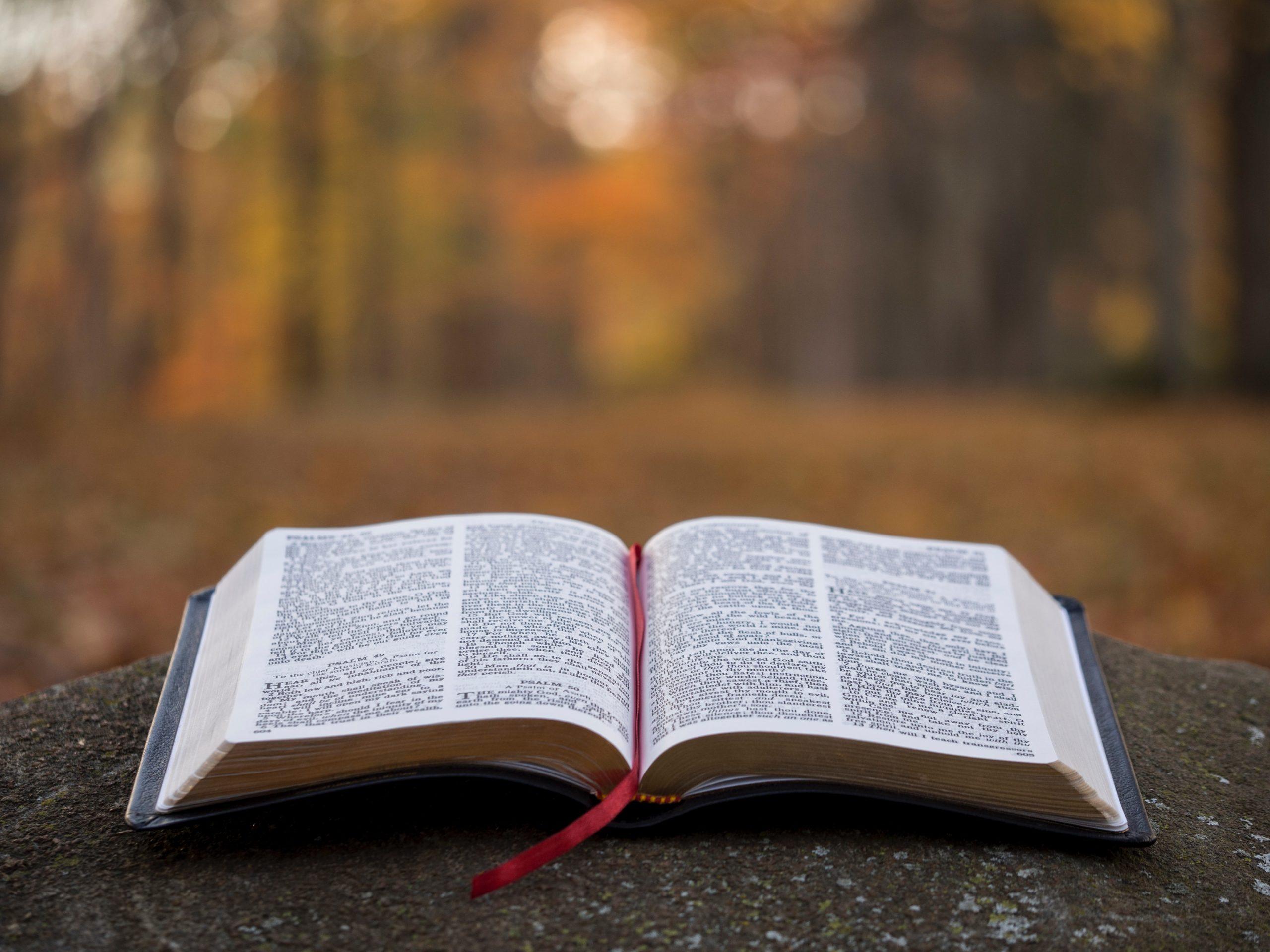 苦しいときの「神頼み」の効用。悩みや困りごと…神頼みするべき?