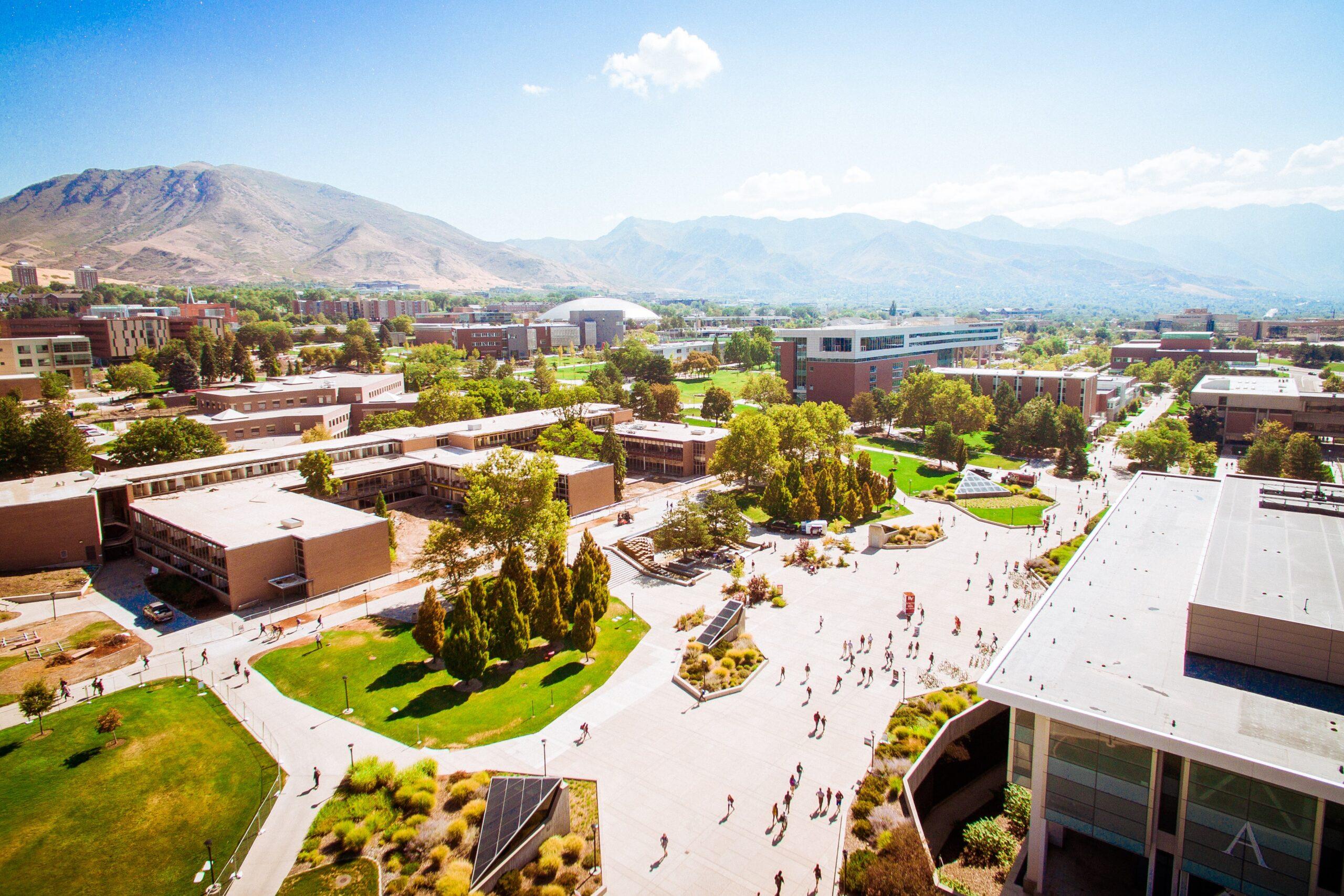 大学に行く必要性ってあるの?大学の本当の価値と費用対効果について