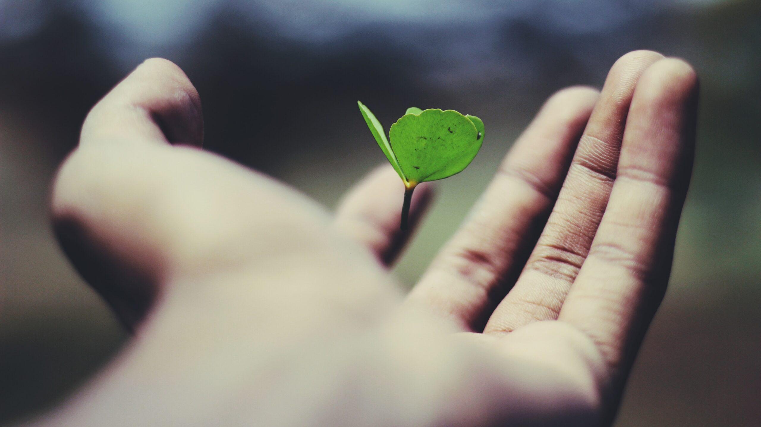 「生きる意味」って何?いらない思い込みを変換して世界を変える方法